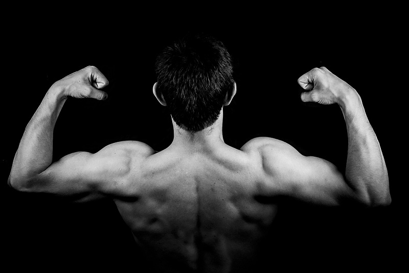 How Bulking Up Makes It Easy To Pack On More Muscle